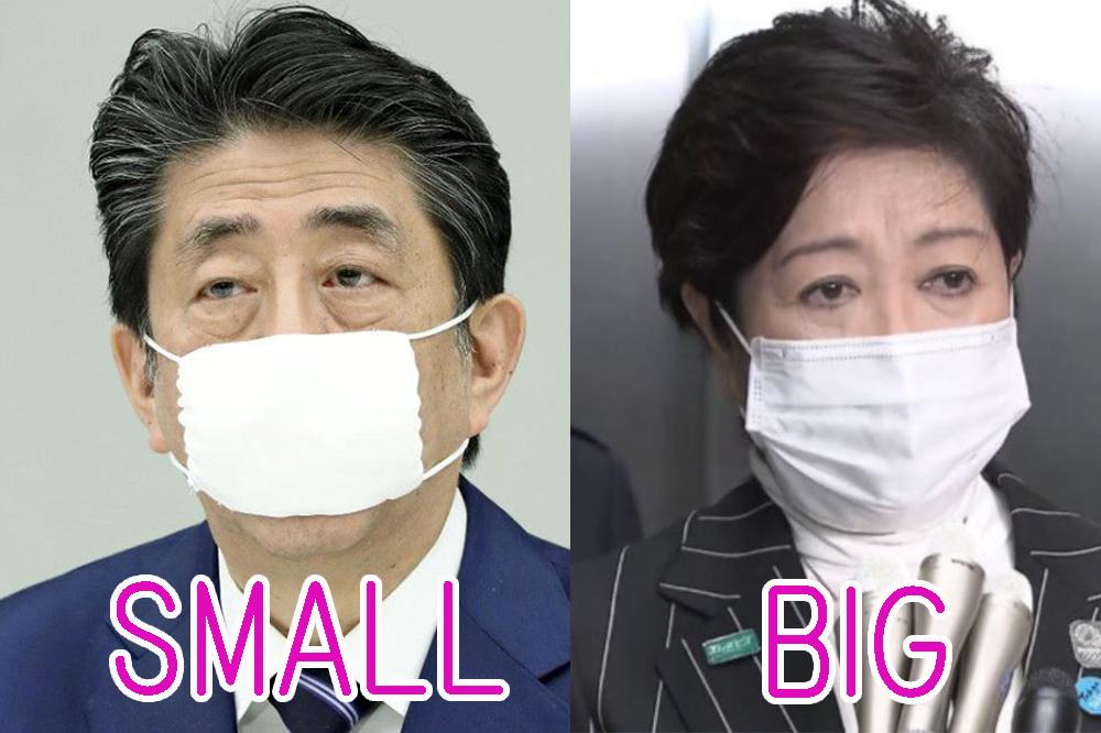 サイズ 安倍 マスク 「サイズが小さくて実用的ではない」 政府配布の布マスク、早くも不評